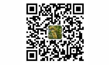 贵州干部和记电讯联系微信